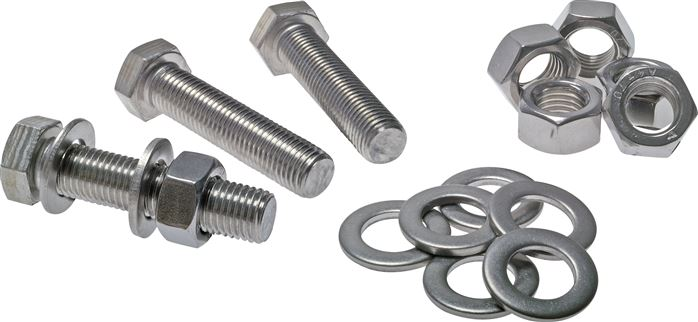 Screws, nuts and disks for flange